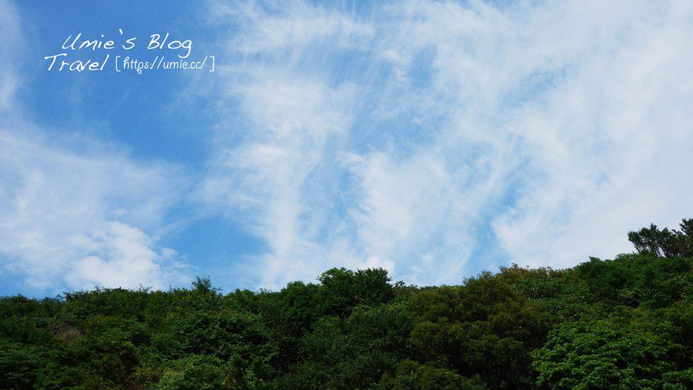 台北觀光景點|陽明山竹子湖繡球花(紫陽花)!夏天限定的夢幻景點-水車寮高家繡球花園 :))