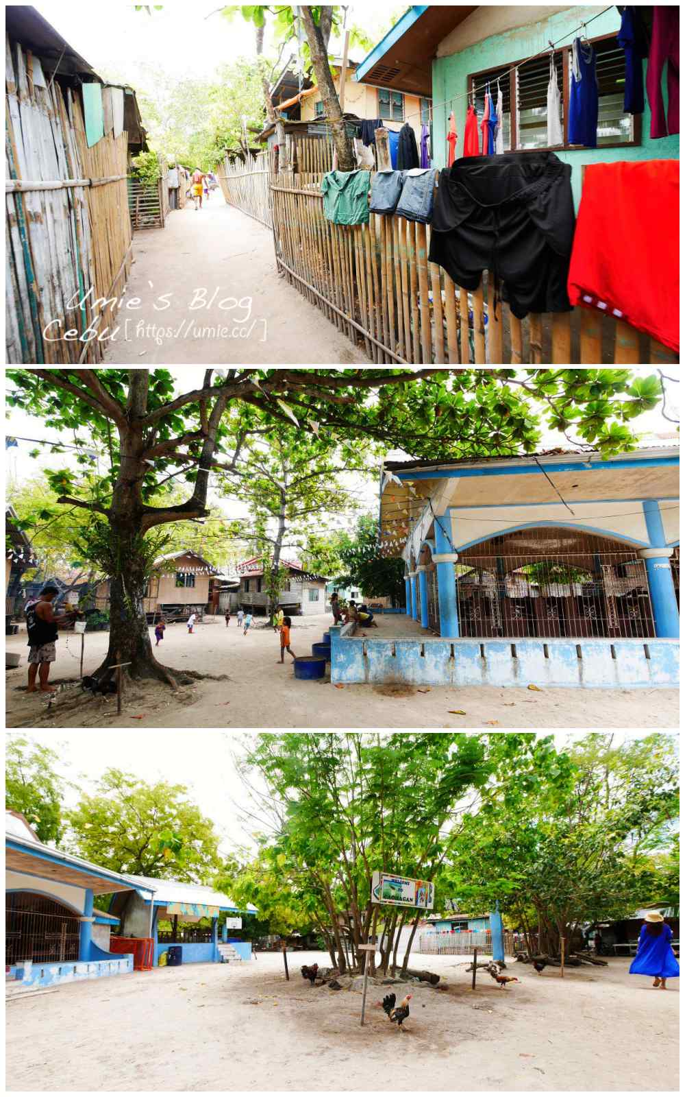 菲律賓宿霧DAY3|美麗的資生堂島Caohagan離島浮潛遊,超新鮮螃蟹海鮮大餐&皇冠麗晶酒店絕美宿霧夜景 :)