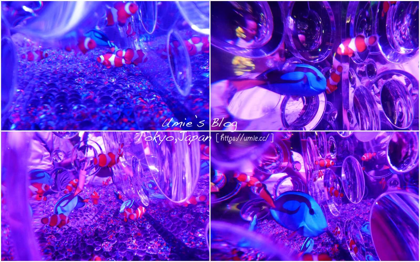 東京日本橋必去|日本藝術水族館,江戶.金魚の涼&夜之水族館,史上最大型金魚展,晚上變身時尚酒吧!