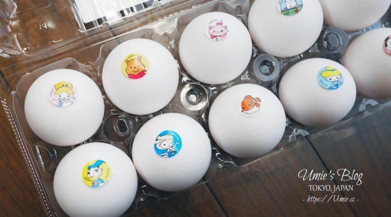 日本迪士尼限定!?日本東京迪士尼限定周邊商品,居然出現了迪士尼雞蛋!!