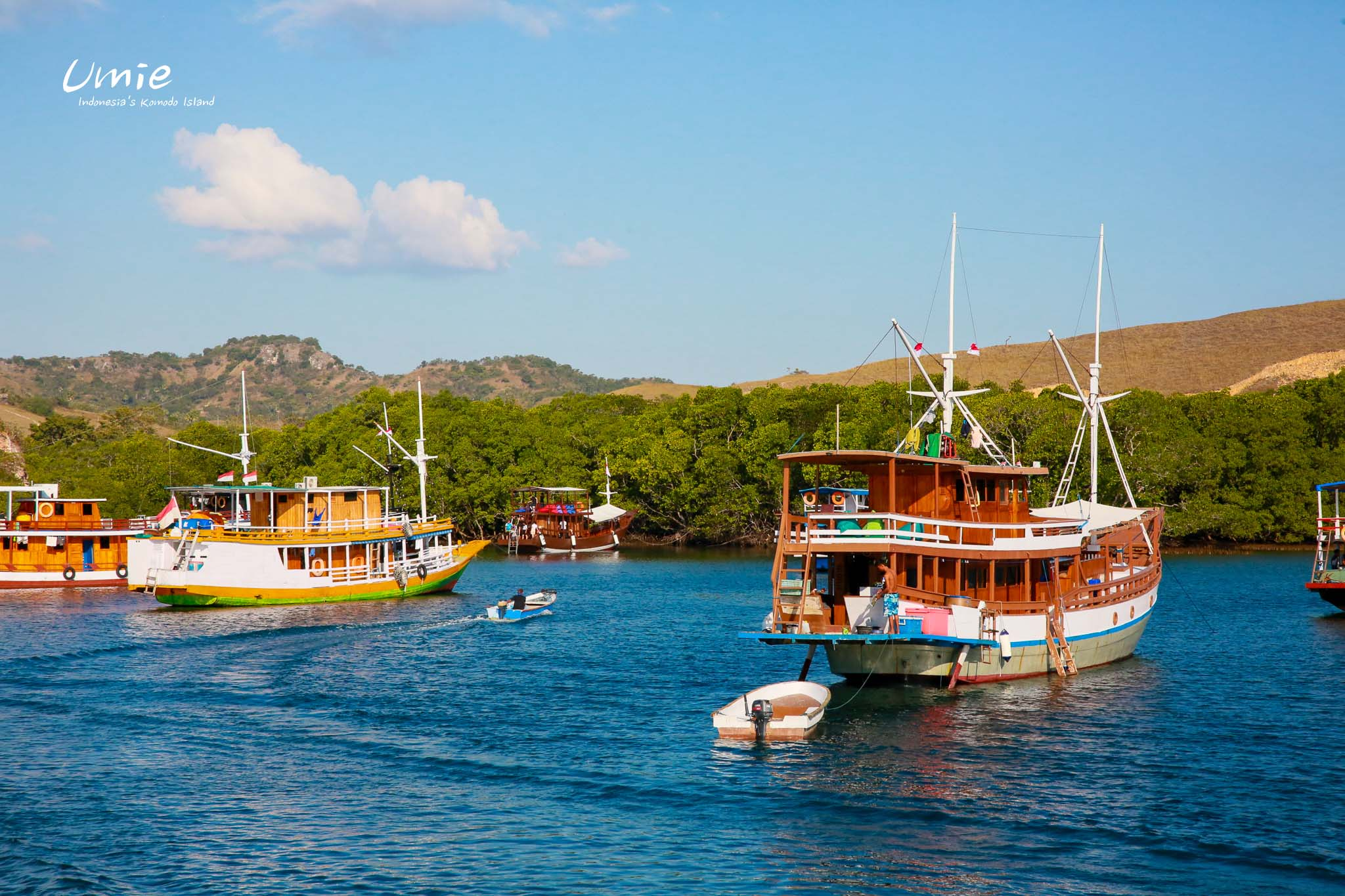 印尼科摩多島推薦行程|船宿遊科摩多群島!人生首次船宿就要在科摩多國家公園海上!