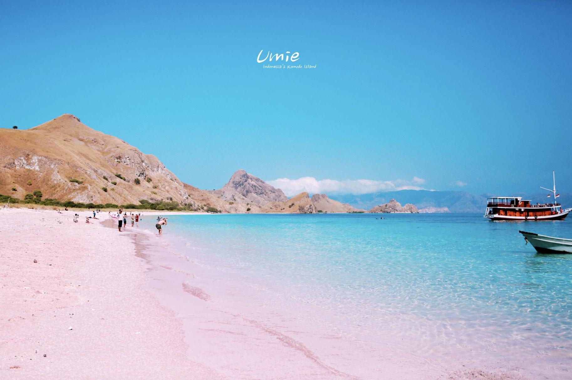 印尼科摩多島行程推薦|粉紅沙灘浮潛 Pink Beach|絕美沙灘!夢幻的粉紅色是真的!