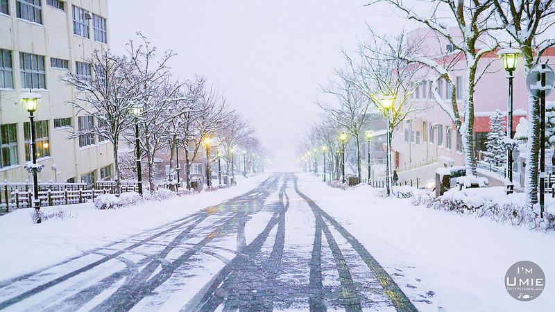 Hakodate,Hokkaido,Japan 日本北海道函館,元町,八幡坂(如舊金山般的美麗坡道)