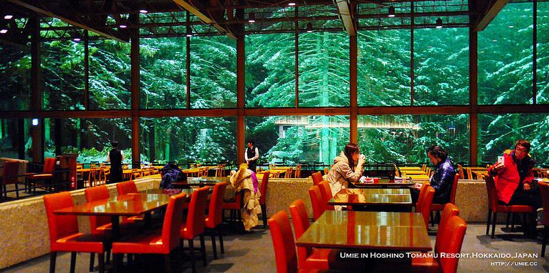 北海道自助7天行程總整理!住宿資訊/餐點/行程規畫/交通/不會日文怎麼辦Q&A
