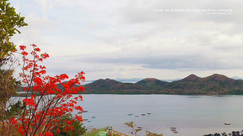 20150609 Day1 coron/palawan/philippines/gateway hotel/diving/菲律賓/科隆/巴拉望/格威酒店