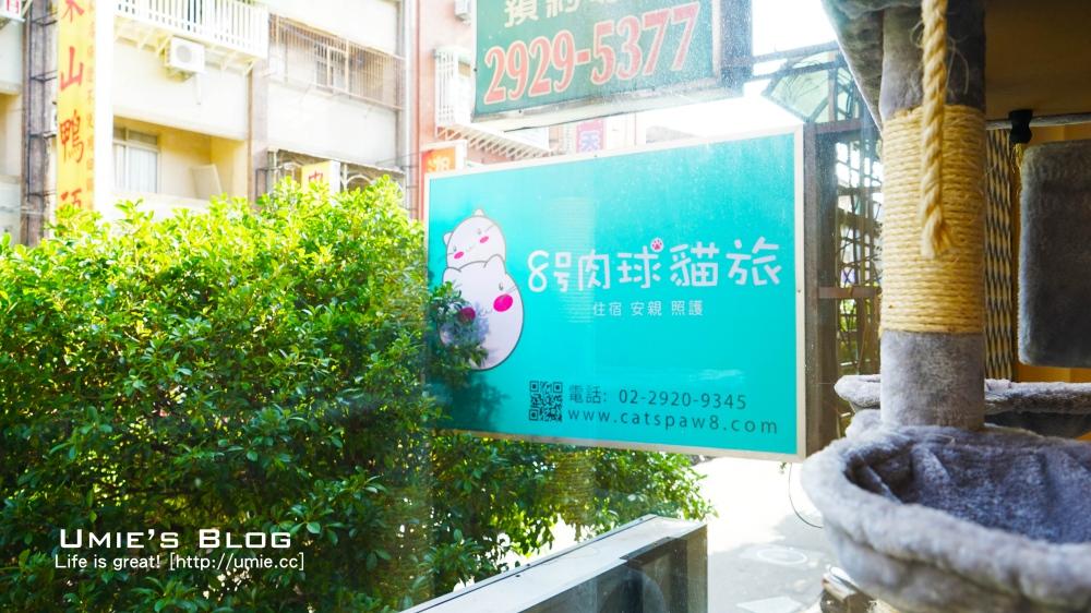 pet-hotel-catpaw808